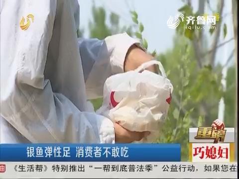 【重磅】东营:银鱼弹性足 消费者不敢吃