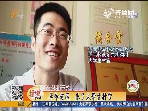 临沂:革命老区 来了大学生村官
