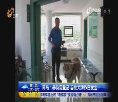 青岛:养狗需登记 首枚犬牌6月8日发出