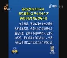 省政府黨組召開會議 研究部署化工產業安全生產轉型升級專項行動等工作