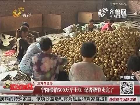【三方帮您办】宁阳滞销500万斤土豆 记者帮着卖完了