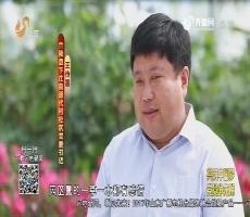 20170611《齐鲁先锋》:身边党员·共筑中国梦 党员争先锋 王传喜——把家园打造成公园
