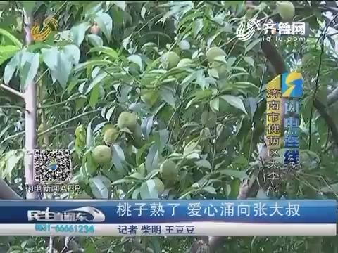 【闪电连线】济南:桃子熟了 爱心涌向张大叔