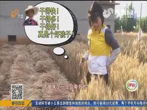 《我要当村姑》第二季:麦收时节