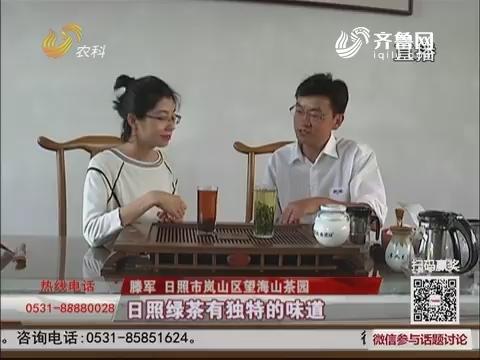【群众新闻】日照:精心发酵 日照红茶新鲜出炉