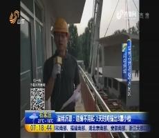 【闪电连线】淄博沂源:建房不用砖 1天时间搭出3层小楼