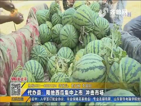 禹城:愁坏瓜农!西瓜产量高品质好 就是没人收