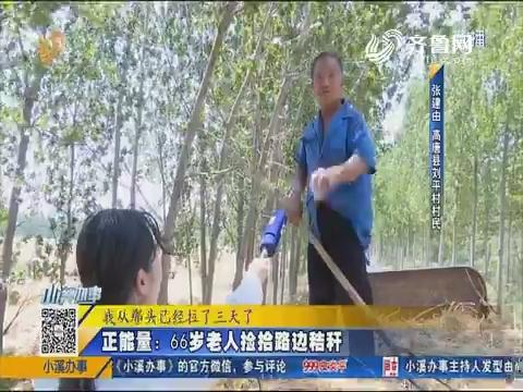 高唐:正能量 66岁老人捡拾路边秸秆