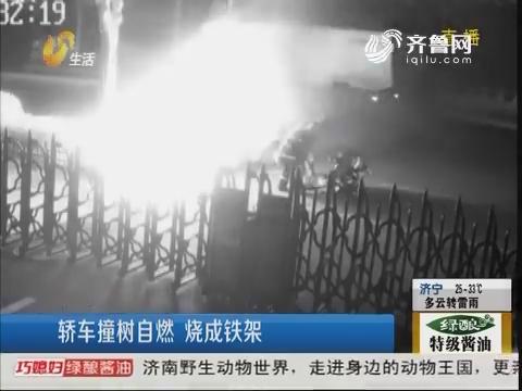 临沂:轿车撞树自燃 烧成铁架