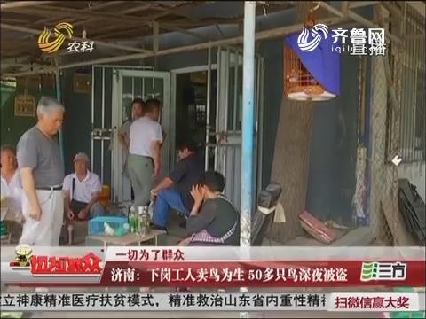 济南:下岗工人卖鸟为生 50多只鸟深夜被盗