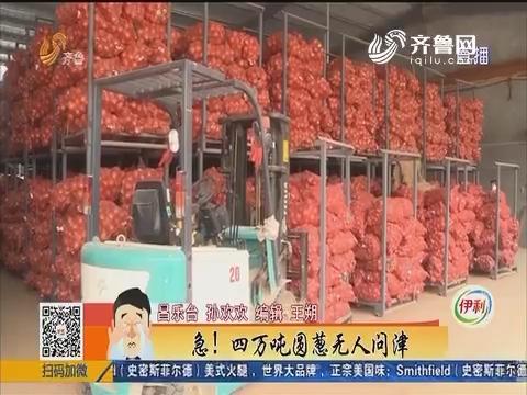 潍坊:急!四万吨圆葱无人问津