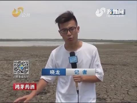 青岛:胶东半岛最大水库几近干涸