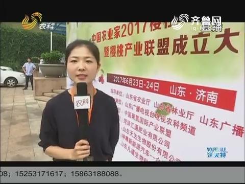 探班中国樱桃论坛