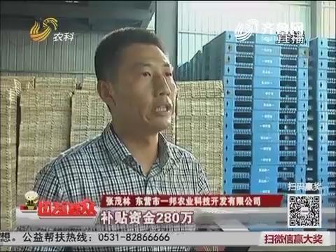 【走基层 看亮点】东营垦利区:工厂化育秧 助力水稻增产