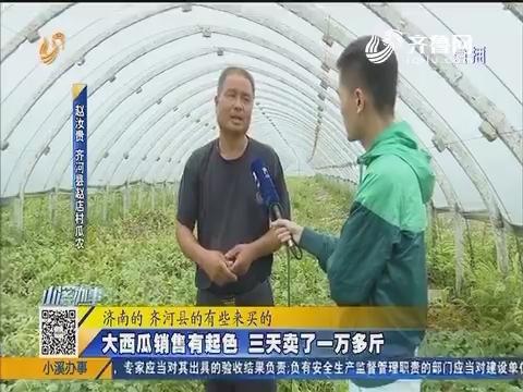 """【急事急办】助农行动:滞销的齐河""""大西瓜"""""""
