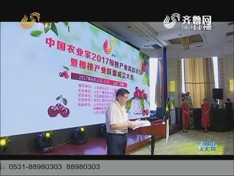 2017中国樱桃产业高端论坛 大樱桃:身材好果才好