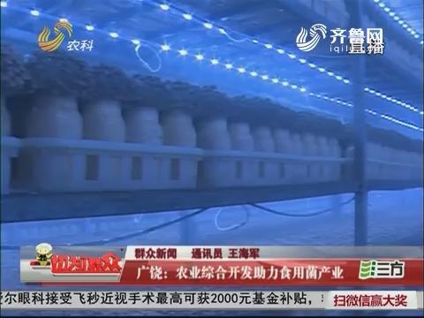 【群众新闻】广饶:农业综合开发助力食用菌产业
