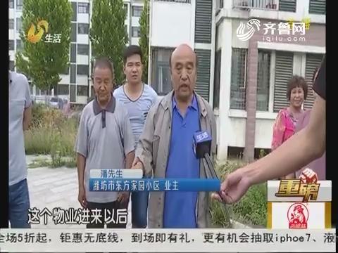 【重磅】潍坊:心疼!20年梧桐树 被人砍了