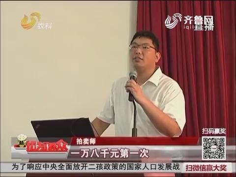 【群众新闻】济南:种猪拍卖会 冠军一万八成交