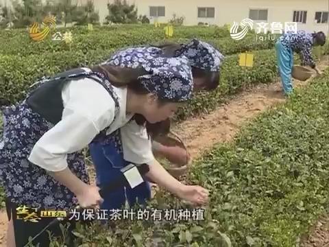 20170702《生态山东》:南茶北引 绿色沂蒙