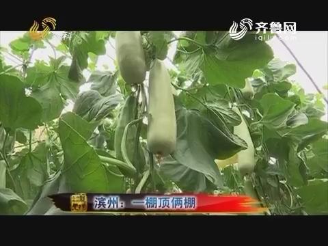 20170704《品牌农资龙虎榜》:滨州 一棚顶俩棚