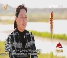 20170706《齐鲁先锋》:身边党员·共筑中国梦 党员争先锋 杨秀丽——院后村的女当家