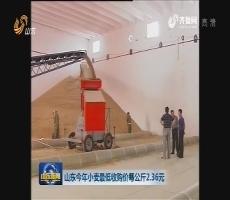 山东启动小麦最低收购价收购预案