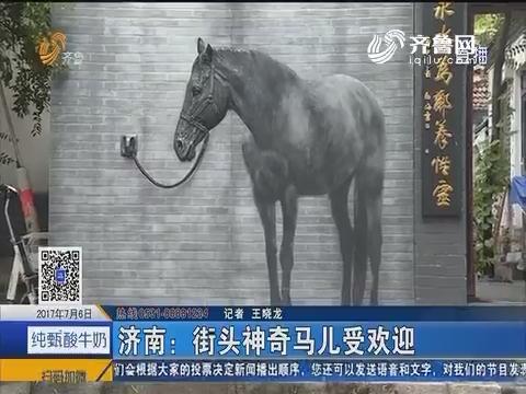 济南:街头神奇马儿受欢迎