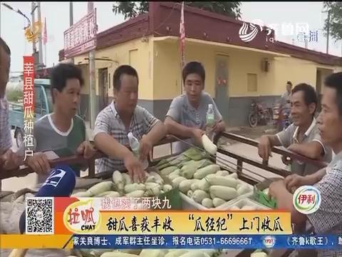 """莘县:甜瓜喜获丰收 """"瓜经纪""""上门收瓜"""