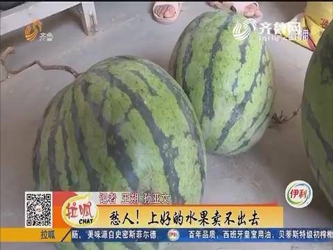 临邑:桥塌了 村民生活遇难题
