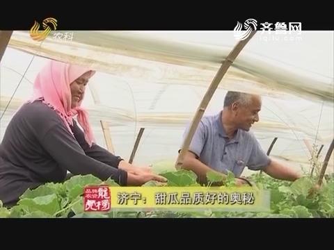 20170711《品牌农资龙虎榜》:济宁——甜瓜品质好的奥秘
