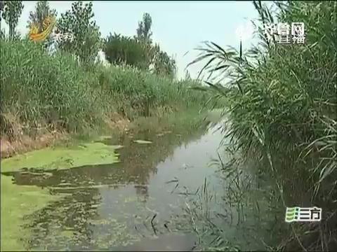 【独家调查】阳信:清水河变成臭水沟 是谁污染了它?