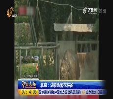 北京:动物防暑花样多