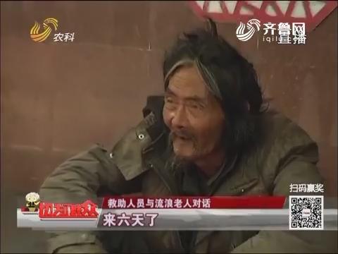 【群众新闻】济南:天太热 别流浪了!回家吧