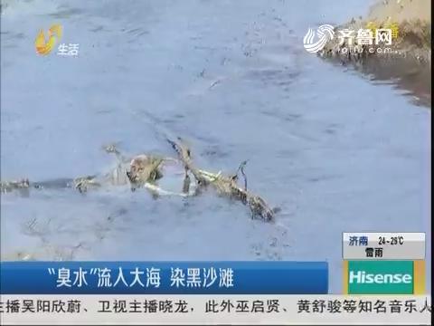 """青岛:""""臭水""""流入大海 染黑沙滩"""