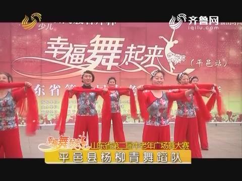 20170719《幸福舞起来》:山东省第二届中老年广场舞大赛——平邑站