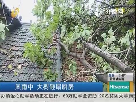 济南:风雨中 大树砸塌厨房