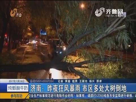 济南:7月18日夜狂风暴雨 市区多处大树倒地