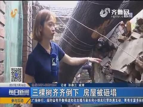 济南:三棵树齐齐倒下 房屋被砸塌