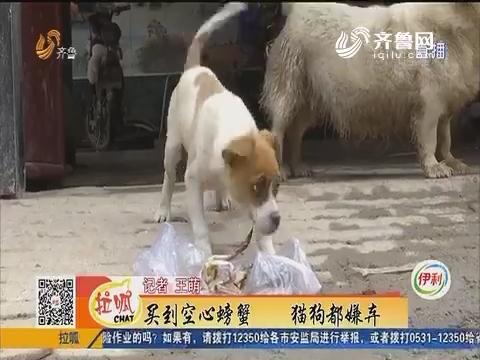 济南:买到空心螃蟹 猫狗都嫌弃
