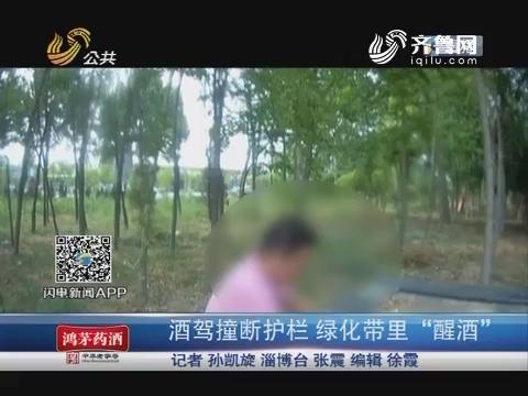 """淄博:酒驾撞断护栏 绿化带里""""醒酒"""""""