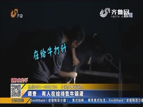 【青岛】举报:有人交易病残牛?