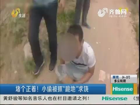 """济宁:堵个正着!小偷被抓""""跪地""""求饶"""