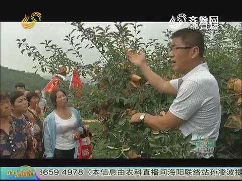 """20170726《农科tb988间》:农联站长在行动——""""科技帮扶乡村""""走进平度"""