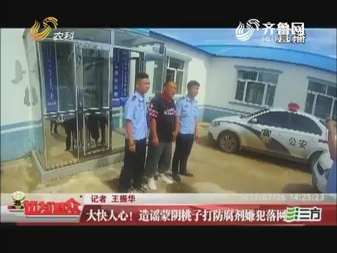 大快人心!造谣蒙阴桃子打防腐剂嫌疑犯落网