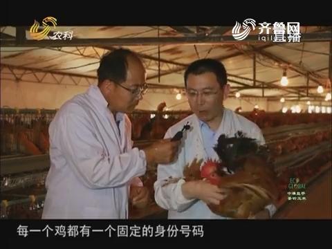 20170728《农科tb988间》:2017山东科技扶贫——莒县贫困户养这样的鸡 挺好
