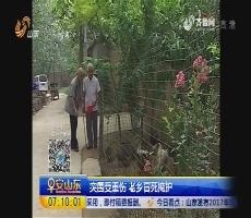 济宁金乡:老兵苦寻恩人 77年后终聚首