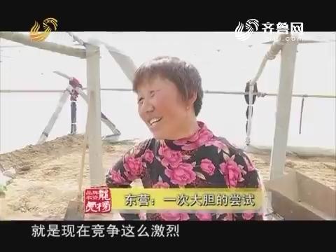 20170801《品牌农资龙虎榜》:东营 一次大胆的尝试