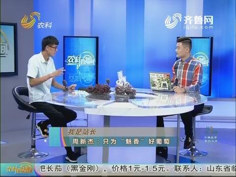 """20170805《农科tb988间》:我是站长 周新杰——只为""""魅香""""好葡萄"""