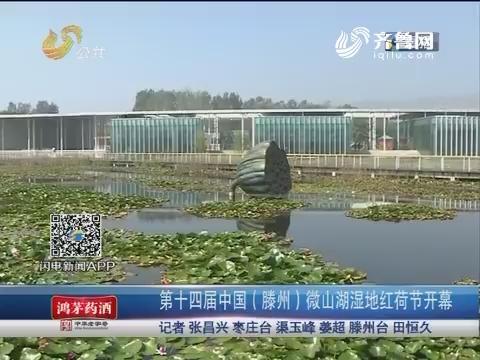 第十四届中国(滕州)微山湖湿地红荷节开幕